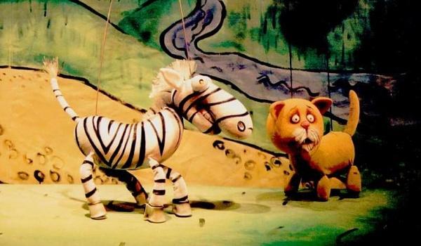 Going. | Tygrys Pietrek