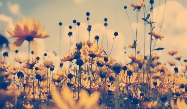 Going. | Chill Niedziela - Relaks nad Wartą