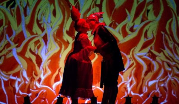 Going.   Czarodziejski Flet - Wrocławski Teatr Lalek