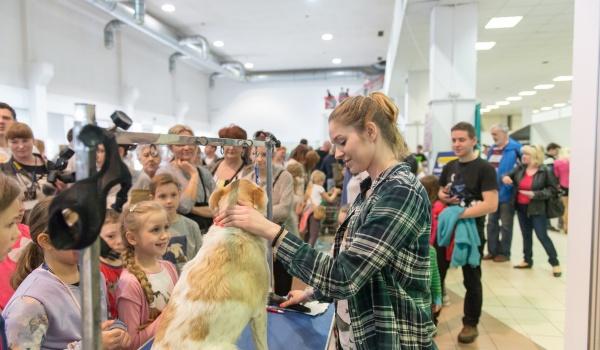 Going. | ANIMAL SHOW – Wystawa Zoologiczna - Centrum Targowe Chemobudowa