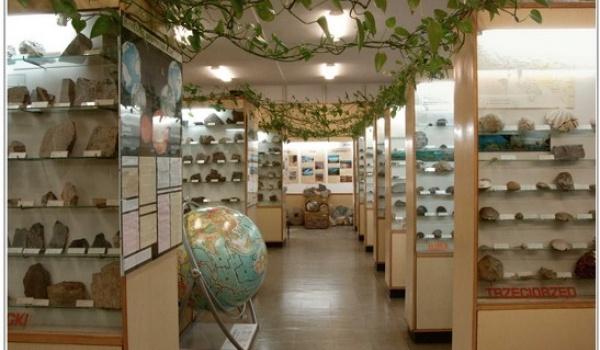 Going. | Noc Muzeów - Muzeum Geologiczne