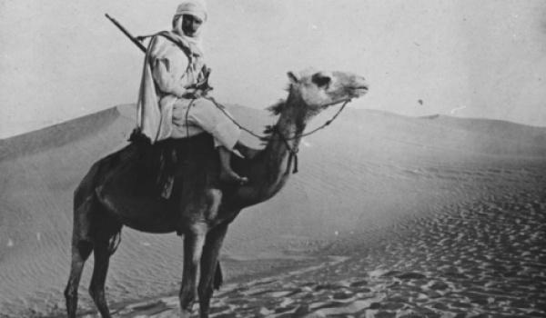 Going. | Arabska Noc - Muzeum Azji i Pacyfiku
