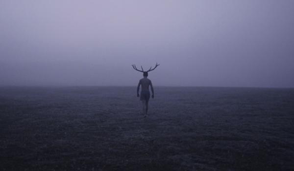 Going. | Konkurs Filmów Krótkich - Świdnicki Ośrodek Kultury