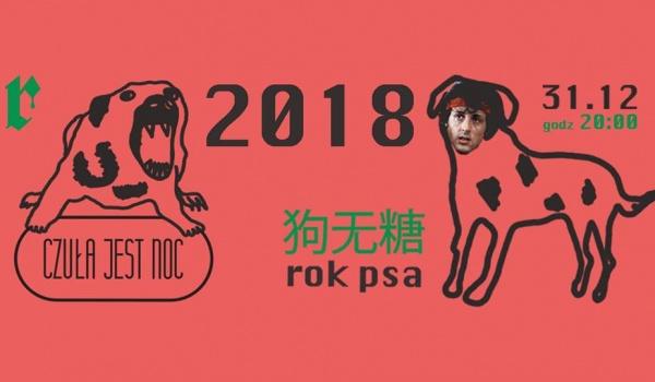 Going. | Sylwester 2018 ROK PSA - Czuła jest noc