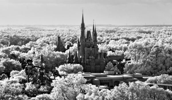 Going. | Królestwo ☆ Enzu / Vazee Dj / Suwal / Buszkers - Dom Kultury Lublin