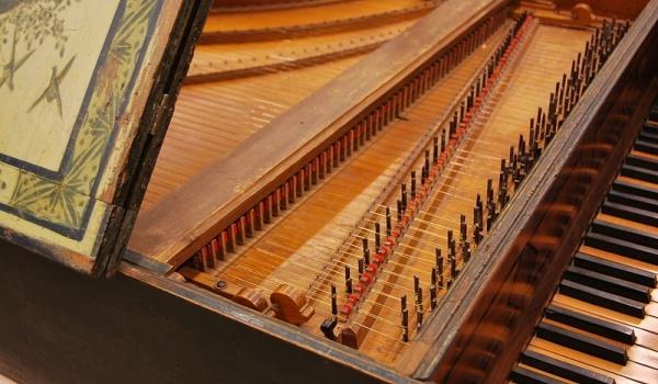 Going. | W krainie muzyki: Pchły tańczące w klawesynie