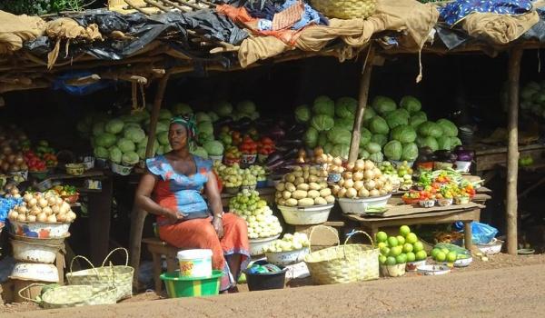 Going. | Autostopem i pieszo przez Gwinee Bissau i Konakry - Bonobo Księgarnia Kawiarnia Podróżnicza