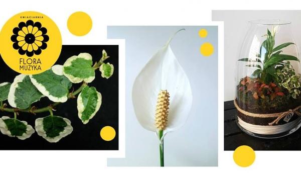 Going.   Azjatyckie Florarium - Warsztaty twórcze z Florą i Muzyką