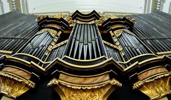 Going. | Koncert Katedry Organów