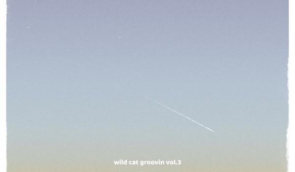Going.   Wild Cat Groovin' vol.3   Holy Motors (EST) + The Saturday Tea