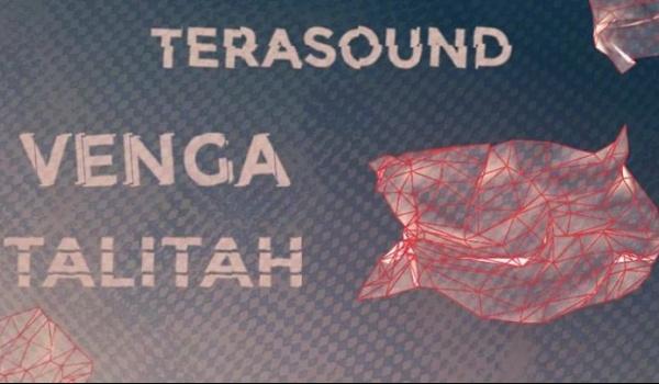 Going. | TeraSound x Polikultura