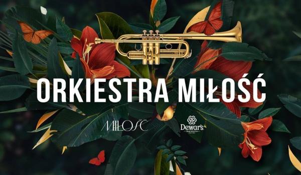 Going. | Orkiesta Miłość na Patio! - Miłość / Patio Kredytowa 9