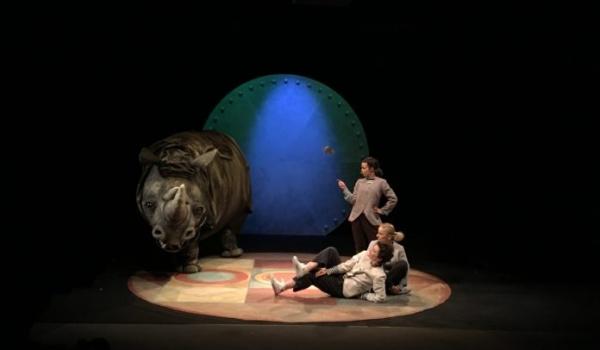 Going. | Kto pocieszy pechowego nosorożca? - Teatr Groteska - Sala Kopułowa