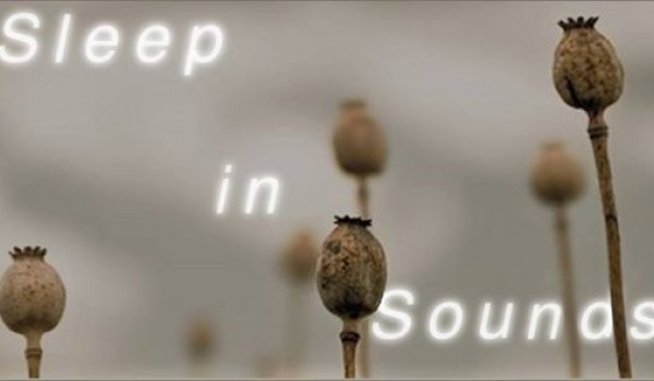 Going. | Sleep-in-Sounds / finał sezonu Zasypiania - Klub Piękny Pies