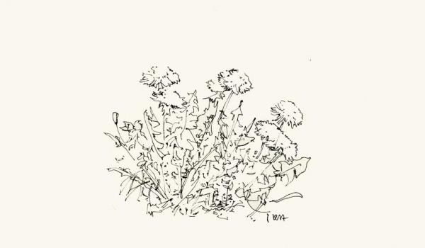 Going. | Oliwia Dudek: Wiosna - Galeria Pojedyncza