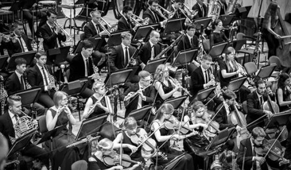 Going. | I, CULTURE Orchestra & Nemanja Radulović - Arkady Kubickiego