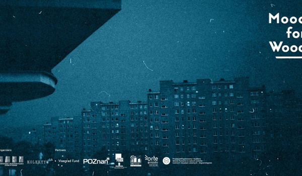 "Going.   Outdoor Cinema - BLOKI Documentary - Dom Kultury ""Orle Gniazdo"""