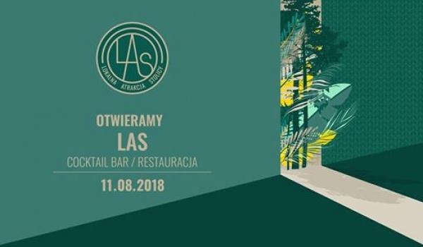 Going. | Otwieramy LAS! / DJ Mały Jaś + Tomasz Busławski (sax) - LAS - Lokalna Atrakcja Stolicy