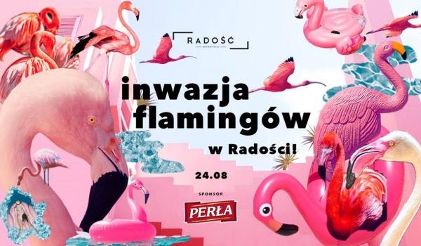 Going. | Inwazja Flamingów - Radość