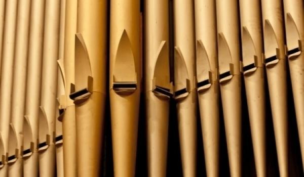 Going.   Koncert organowy Dzieci-Dzieciom - Parafia Matki Boskiej Bolesnej w Rybniku