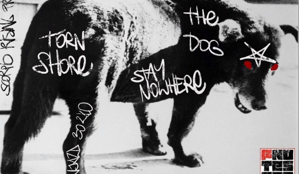 Going. | The Dog / Stay Nowhere / Torn Shore - Protestacja