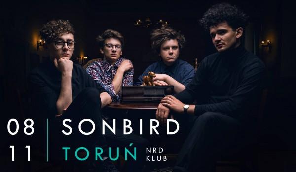Going. | Sonbird / Toruń / NRD Klub - NRD Klub