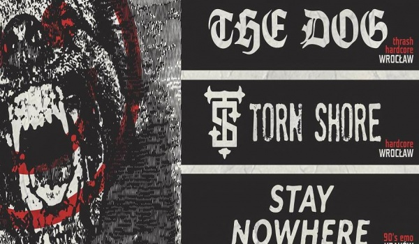 Going.   The Dog / Torn Shore / Stay Nowhere - Warsztat