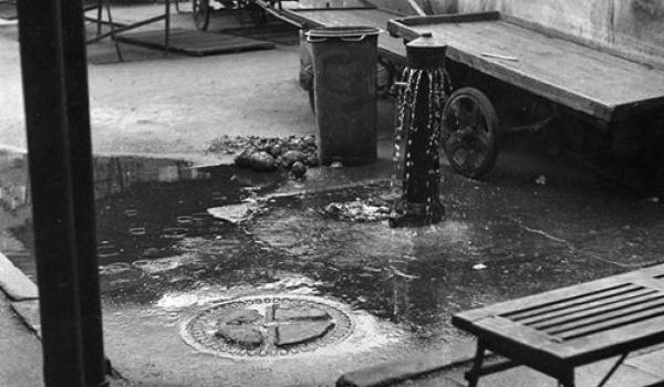 Going. | Z drugiej ręki. Historia Miejskich Hal Targowych. Wykład - Muzeum Gdyni