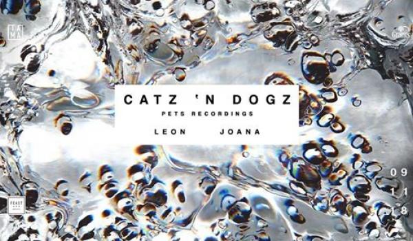 Going. | Catz 'n Dogz - Tama