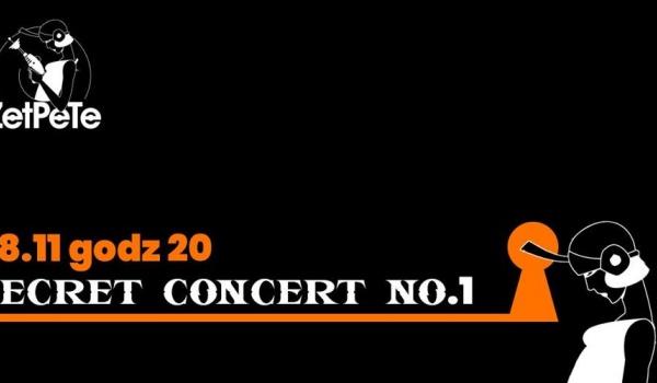 Going. | Secret Concert no.1 - Zet Pe Te