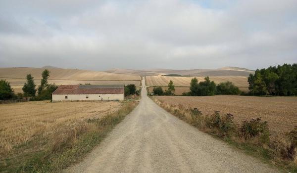 Going. | Camino de Santiago – jak przejść 1152km z plecakiem, i po co? - Z innej beczki-Wysokiej klasy Pub