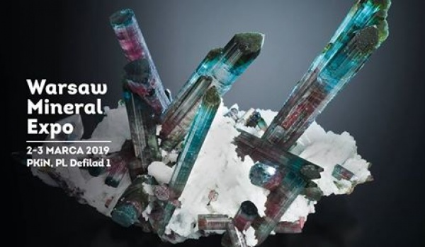 Going. | Warsaw Mineral Expo 2019 - Kinoteka