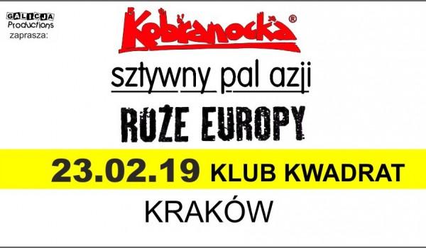 Going. | Kobranocka, Róże Europy, Sztywny Pal Azji - Klub Kwadrat