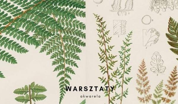Going. | Akwarela botaniczna/ warsztaty vol.1 - Cztery kąty i Smak Piąty