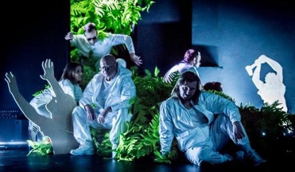 Going. | Great Poland - Teatr Polski w Poznaniu