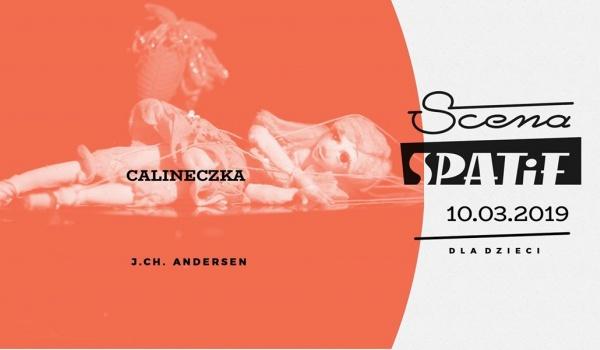 Going. | Calineczka - Klub SPATiF