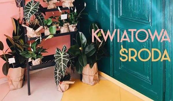 Going. | Garażowa wymianka roślin - Honolulu wise food