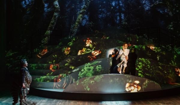 Going. | Kwiat Paproci - Teatr im. Juliusza Słowackiego w Krakowie - Duża Scena