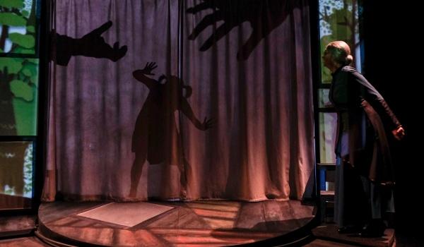 Going. | Teatr cieni Ofelii - Białostocki Teatr Lalek