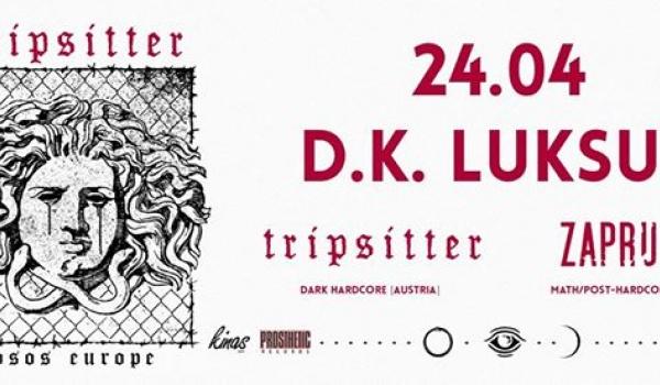 Going.   Tripsitter [AT] + Zapruder [FR] - D.K. Luksus
