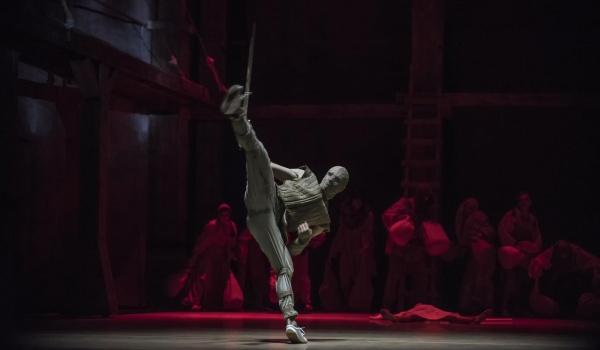 Going. | Wiedźmin - Teatr Muzyczny im. Danuty Baduszkowej - Duża Scena