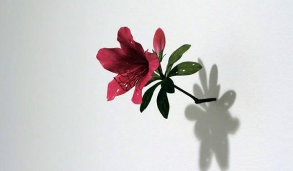 Going. | Natura w sztuce - wernisaż - MOCAK Muzeum Sztuki Współczesnej w Krakowie