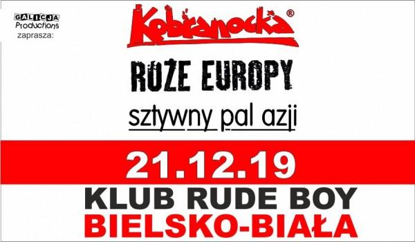 Going. | Kobranocka | Róże Europy | Sztywny Pal Azji - Rude Boy