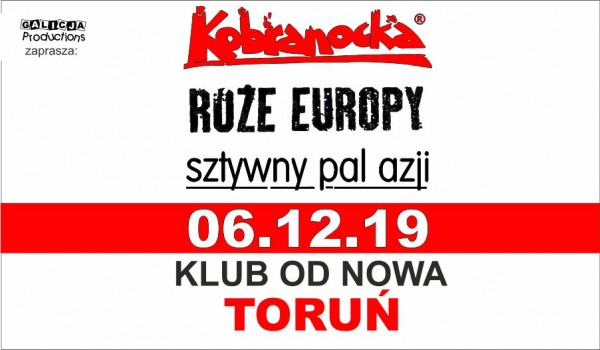 Kobranocka | Róże Europy | Sztywny Pal Azji [SOLD OUT]