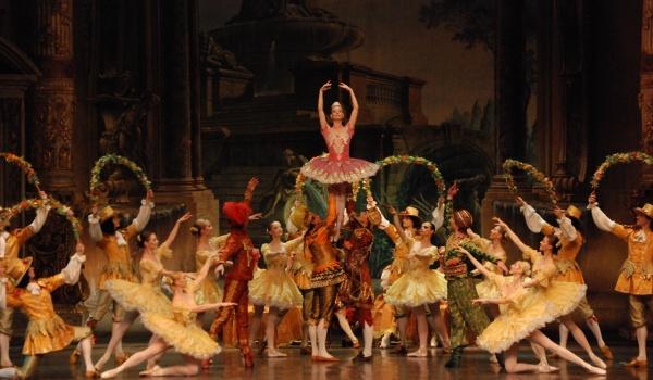 Going.   Śpiąca królewna - Teatr Wielki - Opera Narodowa