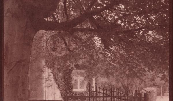 Going. | Talbotypia - papier solny -  warsztat fotograficzny - Warsztaty Kultury
