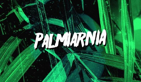 Going. | Palmiarnia - NRD Klub