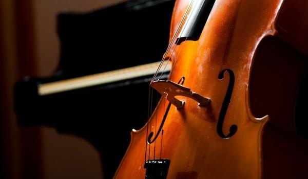 Going. | Cello Festival – Wiolonczela w rękach mistrzów - Centrum Kultury Dwór Artusa