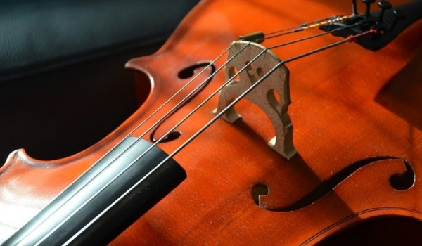 Going. | Cello Festival – wiolonczelowe jam session - Centrum Kultury Dwór Artusa