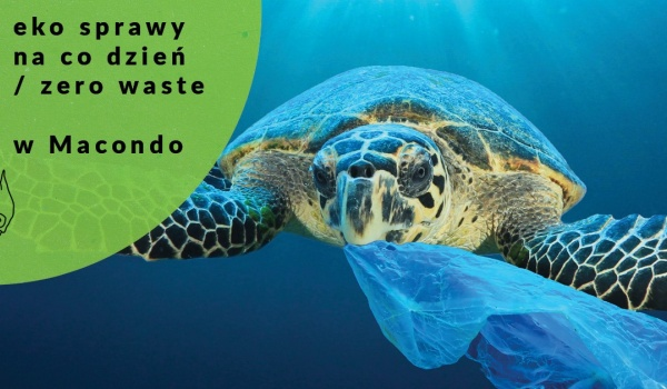 Going. | Eko sprawy na co dzień / zero waste - Macondo Galeria sztuki · Kawiarnia · Księgarnia